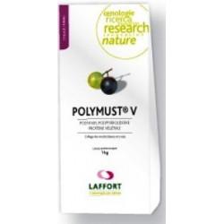 POLYMUST V- 1 kg