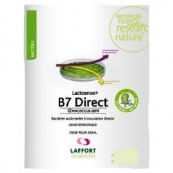 Bakterije LACTOENOS B7 DIRECT- 25 hL